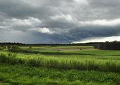 Tormenta sobre el campo — Foto de Stock