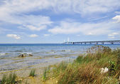 Lake shore of Mackinac — 图库照片