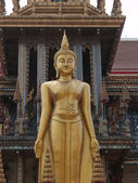 Budha står i templet — Stockfoto