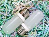 細断紙と電球 — ストック写真