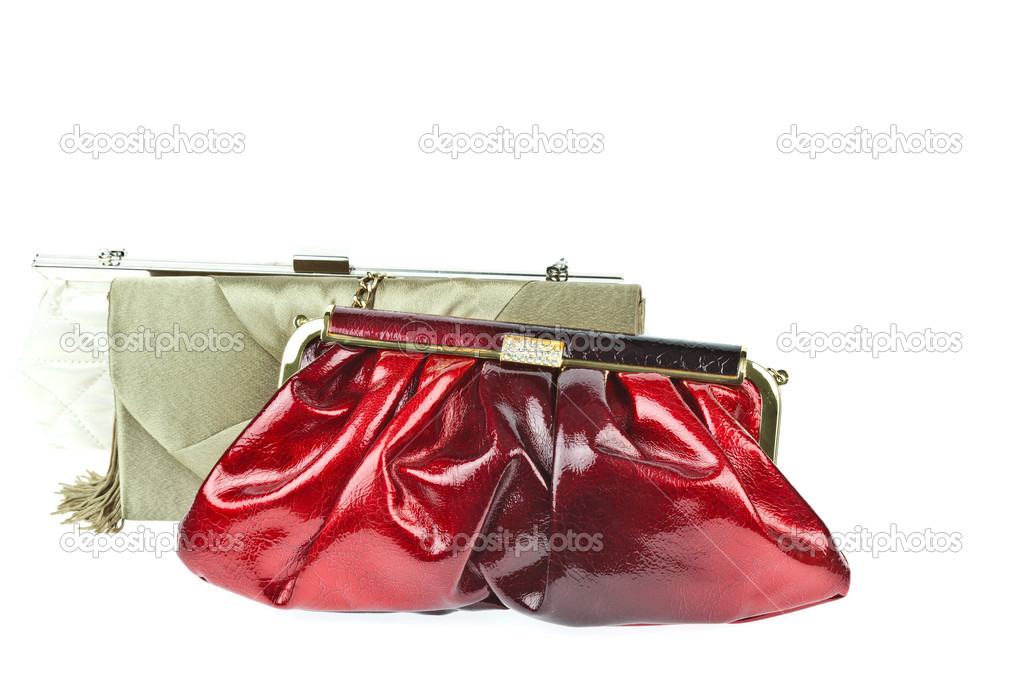 The women clutch bag isolated on white background — Stock Photo #6648997