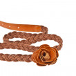 Brown belt  on white background - Stok fotoraf