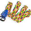 Colorful belt  on white background - Stok fotoraf