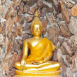 Stock Photo: Buddha, in cave Thailand temple