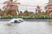 Water treatment of Shrimp Farms covered with nets for protection — Stock Photo