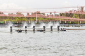 Shrimp Farms covered with nets for protection from bird, ChaChen — Stock Photo