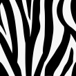 Seamless tiling zebra animal print pattern - Stock vektor