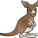 Cute Vector Kangaroo Illustration — Stock Vector #6576492