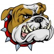 Stock Vector: Mean bulldog mascot illustration