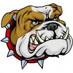 Mean bulldog mascot illustration — Stock Vector