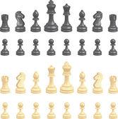 Chess pieces — Stock Vector