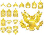 Amerikaanse leger ingeroepen rangschikking insignia pictogrammen — Stockvector