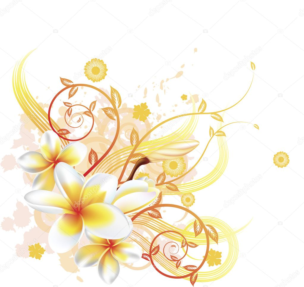 A very stylish vector floral background illustration with Plumeria Frangipani flowers. — Stock Vector #6578902