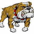 Bulldog clipart illustration - Stock Vector
