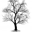 Hand drawn old tree silhouette — Stock Vector