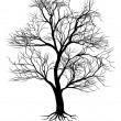 Hand drawn old tree silhouette - Stock Vector