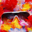 Celebration Background With Tropical Lei and Sunglasses — Stock Photo