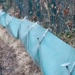 Stock Photo: Toad Fence Environmental Help For Wildlife