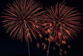 Palmtree like Fireworks At Night — Stock Photo