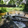 Disused mill near river at summer - Stock Photo