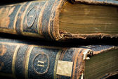 Two volumes antique leather bound books — Stock Photo
