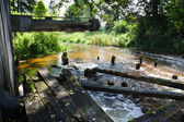 Disused mill near river at summer — Stock Photo