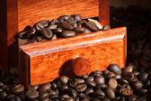 Moulin à café avec les grains de café — Photo