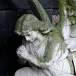 Praying angel — Stock Photo #6503959
