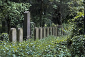 Nameless jewish graves — Stock Photo