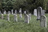 Visited jewish nameless graves — Stock Photo