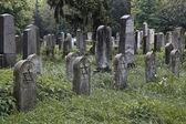 5 jewish tombstones — Stock Photo