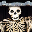 Skeleton out of the box — Stock Photo