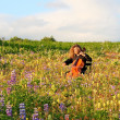 Cello concert in a meadow — Stock Photo
