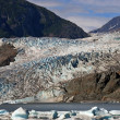 Mendenhall glacier in summer — Stock Photo