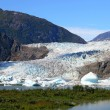 Mendenhall glacier in summer — Stock Photo #6445488