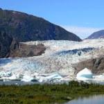 Mendenhall glacier in summer — Stock Photo