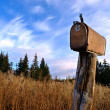 Rusty rural mailbox -  