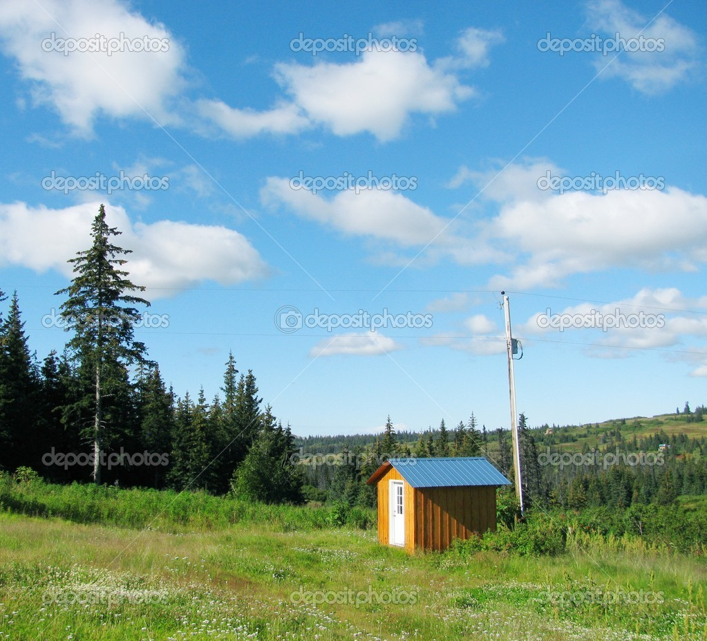 A small shed with a power pole in a green meadow surrounded by a spruce forest with bright blue sky and puffy clouds — Stock Photo #6445442