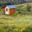 Shed in a meadow — Stock Photo