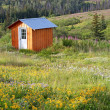 Stock Photo: Shed in a meadow