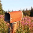 Stock Photo: Rusty rural mailbox