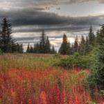 ������, ������: Fall storm in rural Alaska