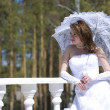 The bride with a umbrella in a sunny day — Stock Photo