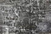 Gray wall backdrop — Stock Photo