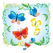 Butterfly -  