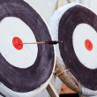 Royalty-Free Stock Photo: Archery Targets