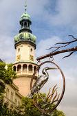 Шопрон - Пожарная башня — Стоковое фото