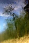 Nature landscape backround — Stock Photo