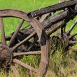 Old horse cart on ranch — Stock Photo