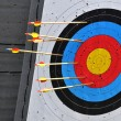 Round Archery Target with Arrows in it — Foto de stock #6670204